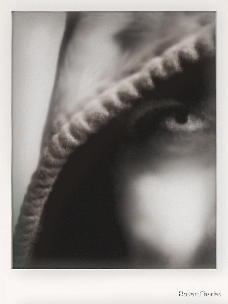 Untitled by RobertCharles
