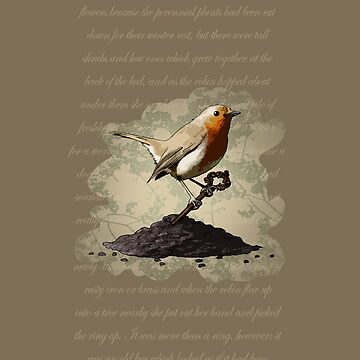 Mr. Robin Finds the Key by leeleeandthebee