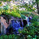Waterfalls #2 by dandefensor