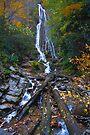 Mingot Falls in Cherokee by photosbyflood