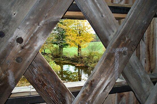 Bridge with a View by Sheri Nye