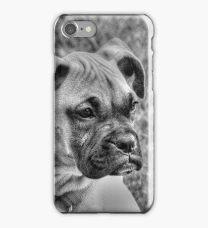 BOXER PUPPY iPhone Case/Skin