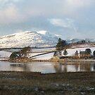 Trawsfynydd Lake Reflection, North Wales UK .... by AnnDixon