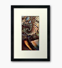 Mesozoic Framed Print
