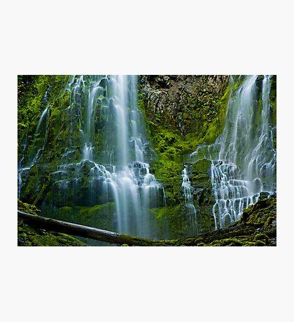 Proxy Falls 2 Photographic Print