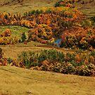 Western-Autumn-Iphone-Case by Lynda   McDonald