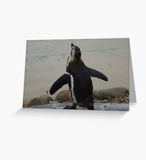 Does my bum look big in this? Greeting Card