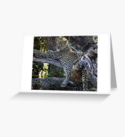 Mom Its Dinner Time Greeting Card