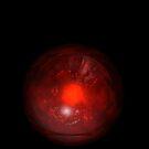 Red Eye by Jo Newman