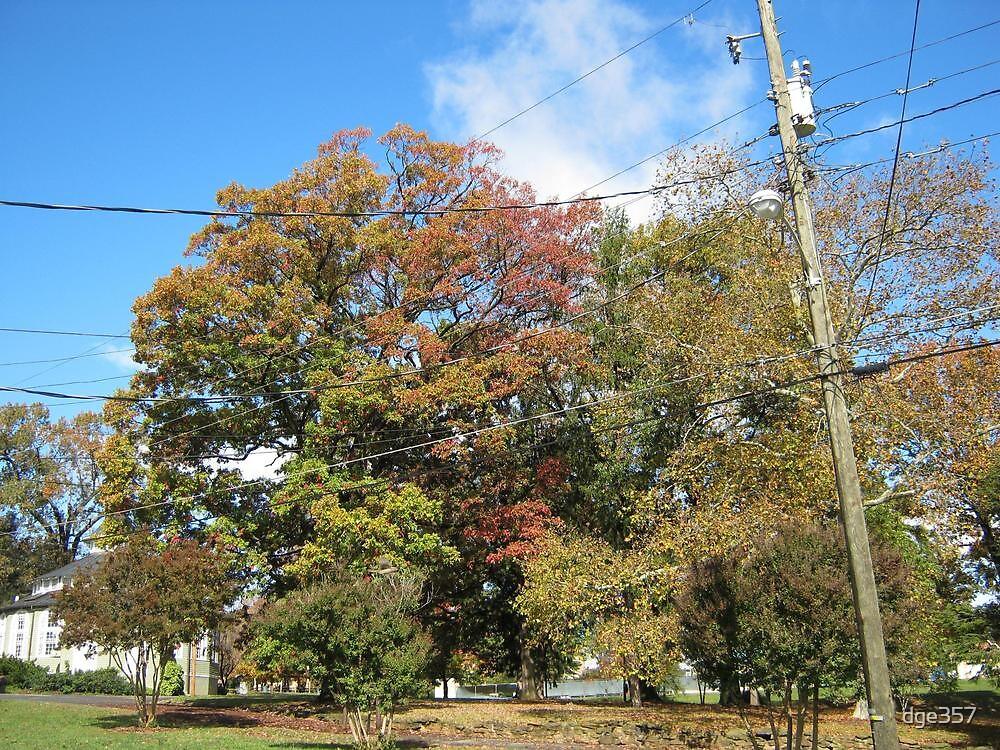 Fall 2011, Sky Blue by dge357