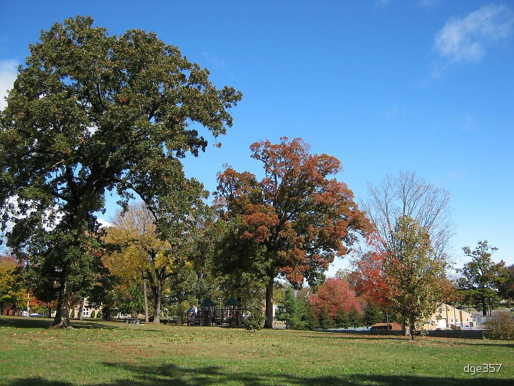 Fall 2011, Wide Open by dge357