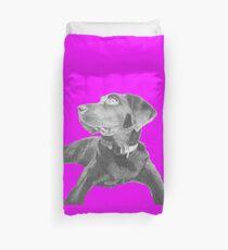 Black Labrador Retriever in Pink Duvet Cover