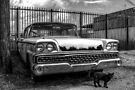 Ford -- 1959 Fairlane by Bill Wetmore