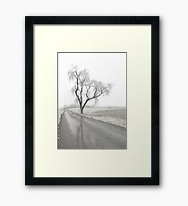 Ice Covered Tree Framed Print