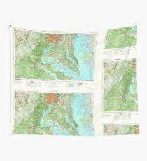 USGS Topo Map District of Columbia DC Washington 257787 1957 250000 Wall Tapestry