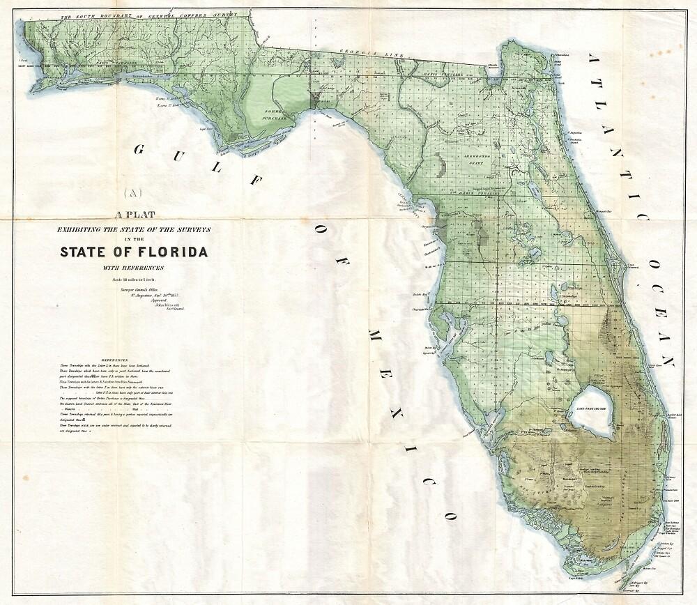 Vintage Map of Florida (1853) by BravuraMedia