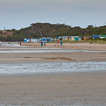 Tyrone foreshore from Blairgowrie end - January 2010 by RyePixels