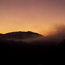 Foggy morning by Myndcrym