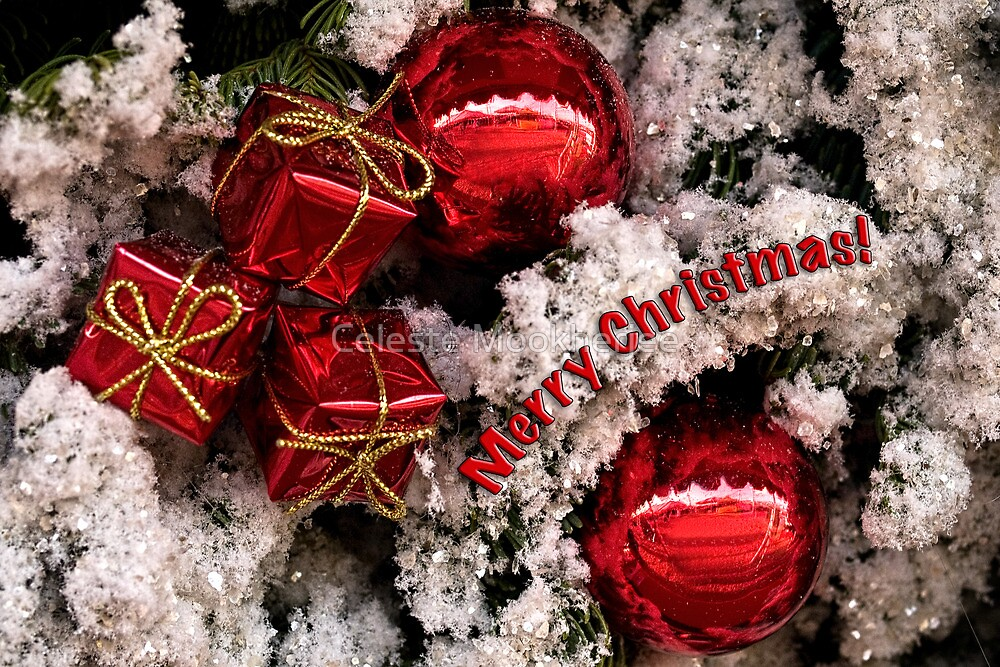 Christmas red and white - card by Celeste Mookherjee
