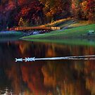 """""""Perfect Crisp Fall Day At The Park"""" by Melinda Stewart Page"""