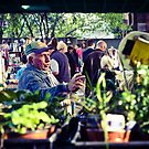 Rozelle Markets by David Sundstrom