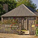 Sharam Cottage, Penola 1850 by TonyCrehan