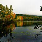 Fogg Morning in the Adirondacks by BigD