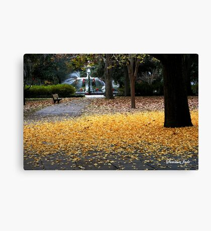 A Carpet of Golden Leaves Canvas Print