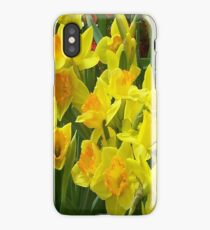 iPhone Case - Daffodils iPhone Case