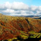 autumn in langdales by Ilapin