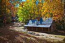 The Ogle House by photosbyflood