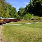 Great Smoky Mountain Railroad by Laurie Perry