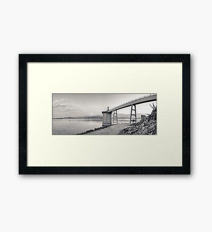 The Crane Framed Print