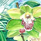 Green Orchid by clotheslineart