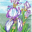 German Iris by clotheslineart