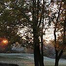 Fall Morning by junebug076