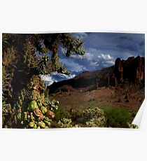 Arizona Desert at Superstition Mountain Poster