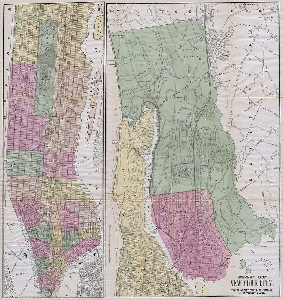 Vintage Map of New York City (1863) by BravuraMedia