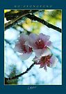 Flowers - Ho'oponopono by McAllister