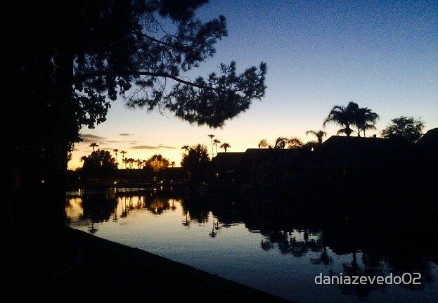 Arizona Sunset On The Lake by daniazevedo02
