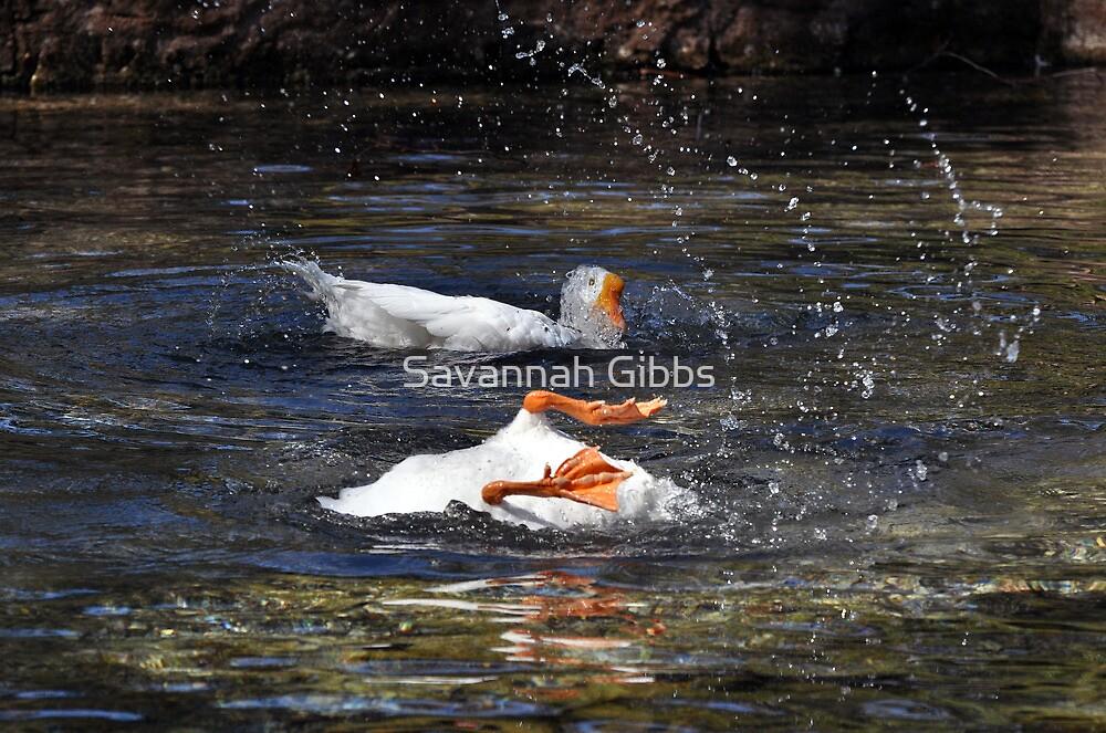 Splashing Geese by Savannah Gibbs