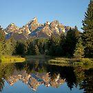 Morning light on the Grand Tetons by Steve Biederman
