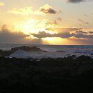 Sunset Golden PG by Sandra Gray