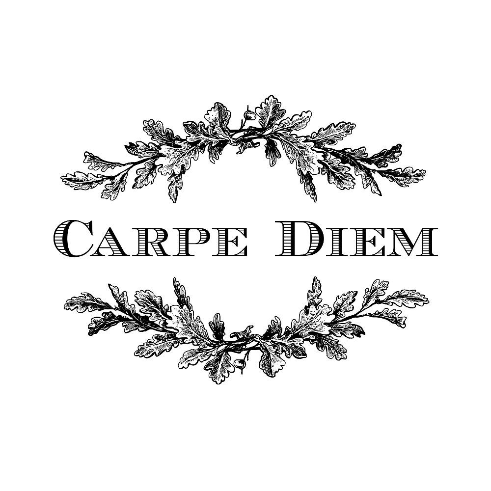 Carpe Diem by Thousand Word Graphics