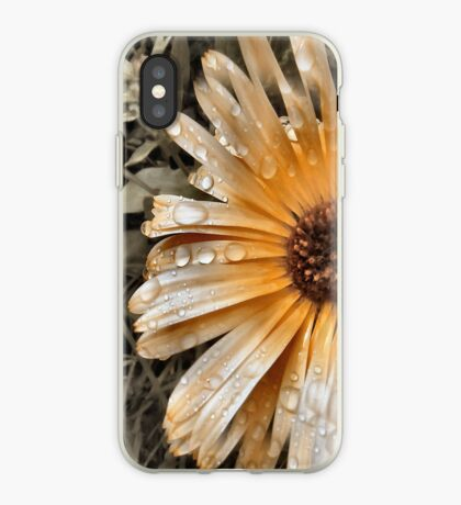 Raindrop Calendula iPhone Case