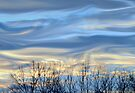 Treeline & Clouds (Impressionism) by Laurie Minor