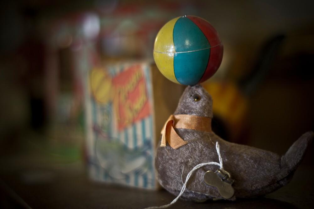 Playful Seal by Sergey Kalashnik
