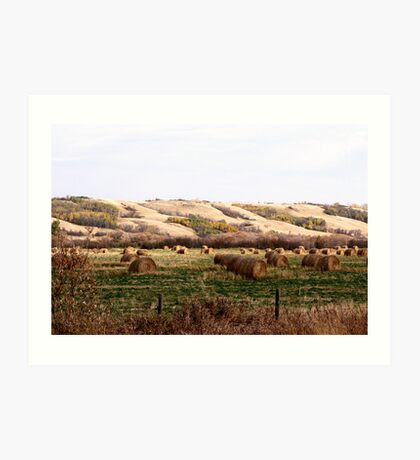 Valley Of The Bales Art Print