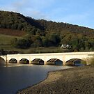 Ladybower Viaduct by Paul  Green
