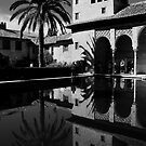 Partal, Alhambra, Spain by Peter  Thomas